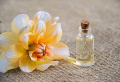 close up photo of white and yellow flower near glass bottle - Title cover for Bloguary